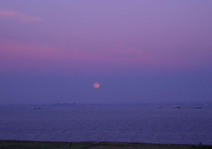 夕暮れ東京湾