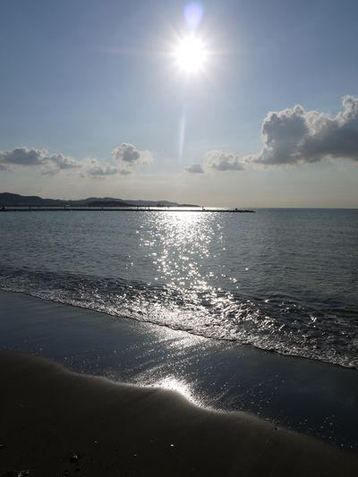 館山の浜辺